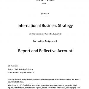 Aid in the formulation of the internationalisation strategy of a subsidiary company to a hypothetic CEO